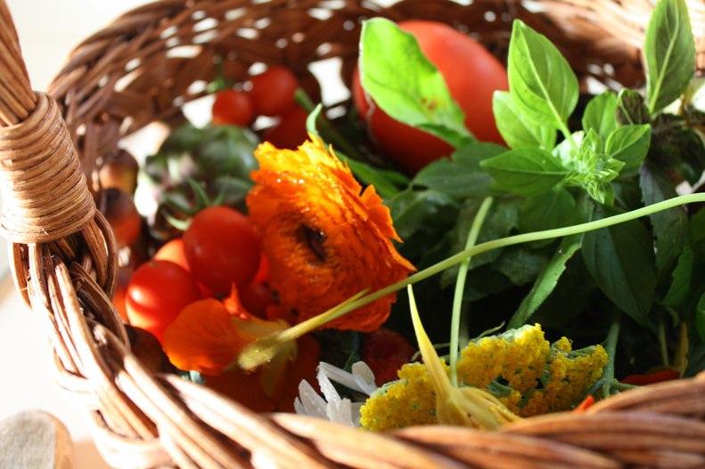 4-morning-harvest