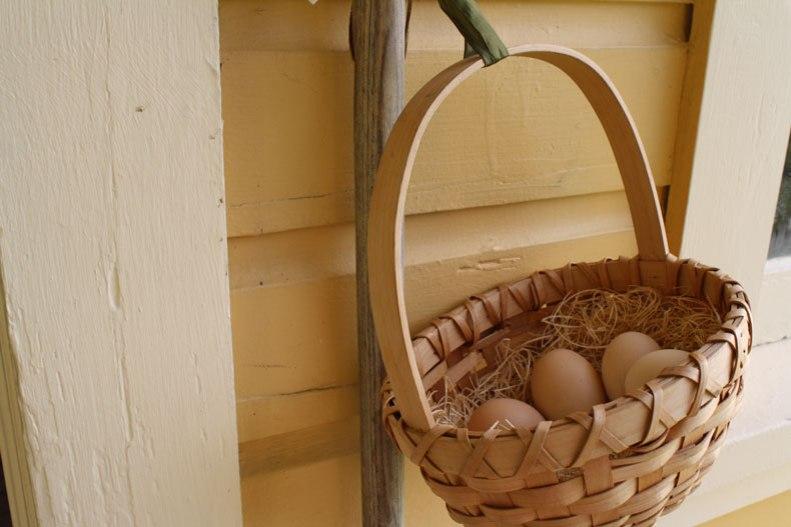 5-fresh-eggs