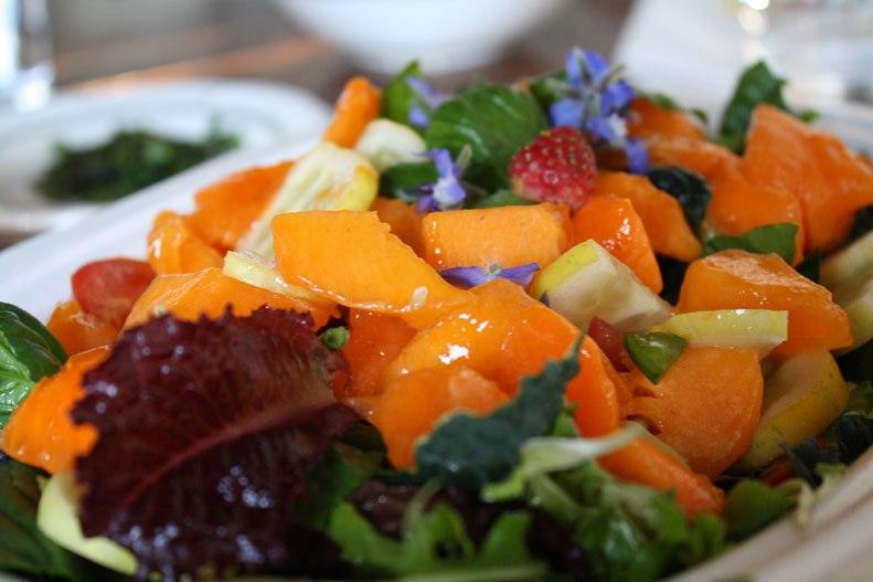 food-big-salad