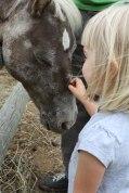 P-with-pony