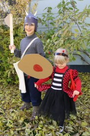 viking-and-ladybug