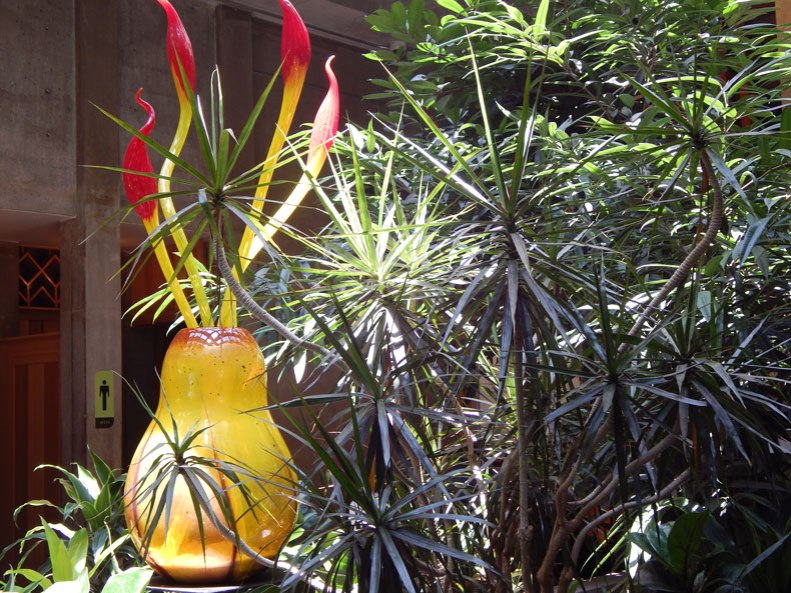 Chihuly-and-palms