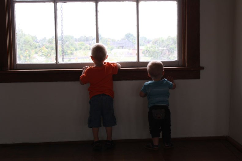 buddies-at-the-window